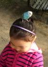 S2010111parkbird2